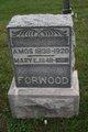 Profile photo: Pvt Amos Forwood