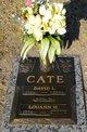 David Lee Cate