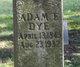 Profile photo:  Adam E. Dye