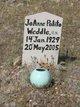Profile photo:  JoAnne <I>Polito</I> Weddle