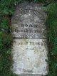 Robert C Kenyon