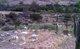Archuleta Family Cemetery