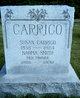 Profile photo:  Susan <I>Smith</I> Carrico