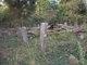 Brinkley Cemetery