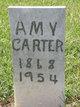 Profile photo:  Amy Carter