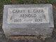 Profile photo:  Carry E. <I>Carr</I> Arnold