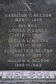 William Harrison Nelson