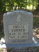 Profile photo:  Amelia Conner