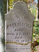 Profile photo:  Mary A <I>Hyers or Hiers</I> Gloshen