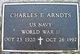 Charles E Arndts