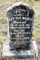 Little Walt C. Morrison