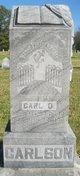 Profile photo:  Carl Oscar Carlson