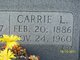 Profile photo:  Carrie Lena <I>Metoni</I> Aita