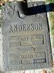 Noreen <I>Bridge</I> Anderson