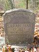 Sarah Jane <I>Wilson</I> O'Dell