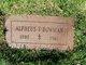 Alpheus Tice Bowman