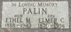 Elmer Clarence Palin