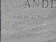 Aaron Cone Anderson