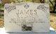 R. L. James