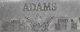 Henry Morton Adams