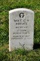 Profile photo:  Mike C V Abbate