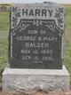 Profile photo:  Harry G Balzer