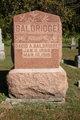 David A. Baldridge