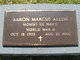 Aaron Marcus Allen