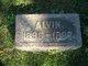 Profile photo:  Alvin Peter Anderson