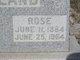 Rose A. <I>Grafignia</I> Holland