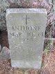 Anthony Joseph Martin