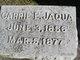 Profile photo:  Carrie Estelle Jaqua