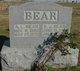 Profile photo:  Abraham Lincoln Bear