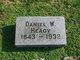 Daniel W Heagy