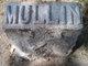 Profile photo:  Mullin
