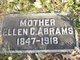 Ellen Clesta <I>Jamison</I> Abrams