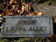 """Profile photo:  Larry Earl """"Infant"""" Alley"""