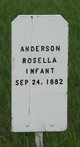 """Rosella """"Infant"""" Anderson"""