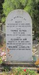 Thomas Alfred Jenkins