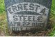 Ernest Steele