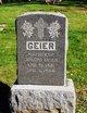 Profile photo:  Geier