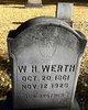 William H Werth