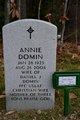 Daniel Joseph Domin