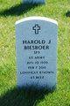"Profile photo:  Harold J. ""Beez"" Biesboer"