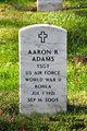 Profile photo:  Aaron Rex Adams