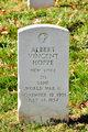 Albert Vincent Hoppe
