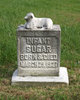 "Profile photo:  ""Infant"" Sugar"