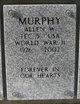 Profile photo:  Allen W Murphy