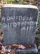 Profile photo:  A. Davidson