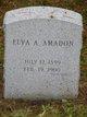Profile photo:  Elva A Amadon
